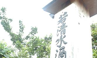 wakashimizu